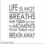 Life is not measured by the breaths we take but by the moments that take our breath away -SIZE - 17