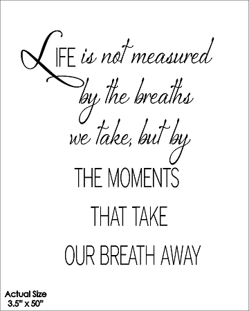 Life Is Not Measured By The Breaths Quote Prepossessing Life Is Not Measuredthe Breaths We Take Butthe Moments