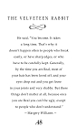 THE VELVETEEN RABBIT- A wonderful excerpt with great words. - 23